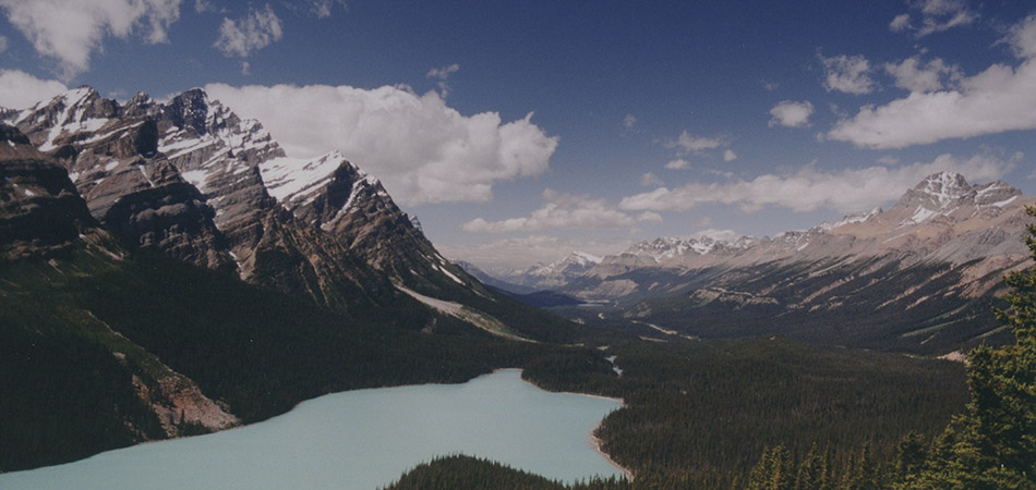 """Peyto Lake, Canadian Rockies"""